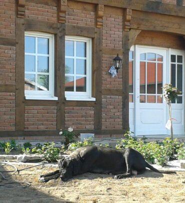 Ondra vor der neu gestrichenen Haustür.