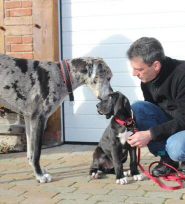 eute ist die kleine Gana zu ihrer neuen Familie gezogen.